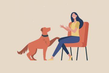 Köpek Eğitimini Kolaylaştıran Yöntemler | 10 İpucu