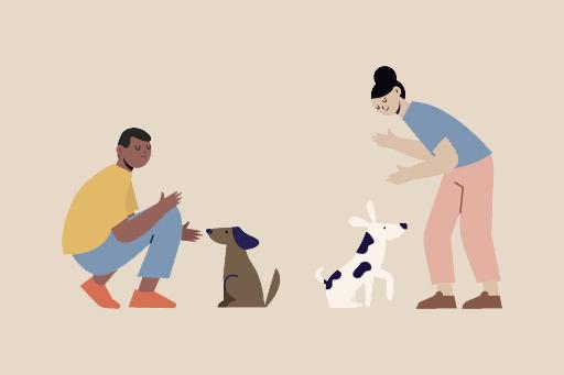 Köpeklerin Beden Dilini Anlamak