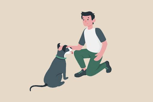Yaşlı Bir Köpek Sahiplenmek